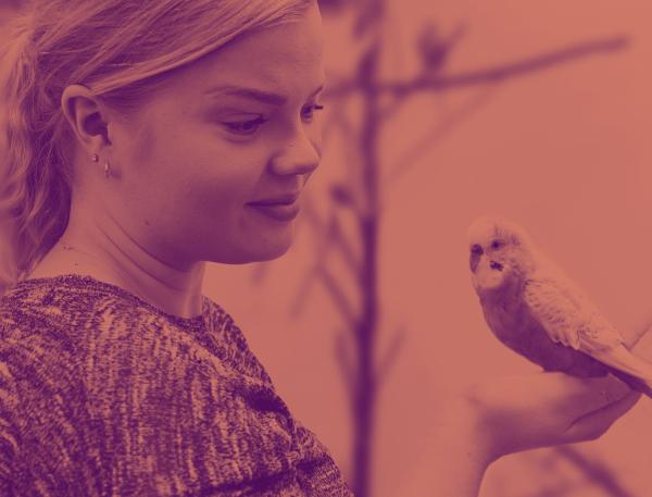Nainen pitelee kädessää lintua.